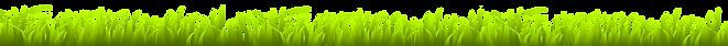 grass-header.png