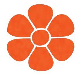 Flower pin board - 'tangerine'
