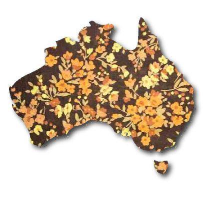 Australia Map pin board  - 'spring fever'