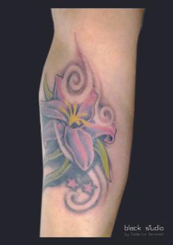 Tattoo Piercing Torino Lingotto