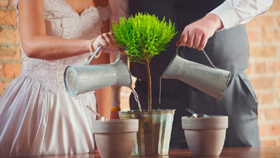 ritual plantación boda