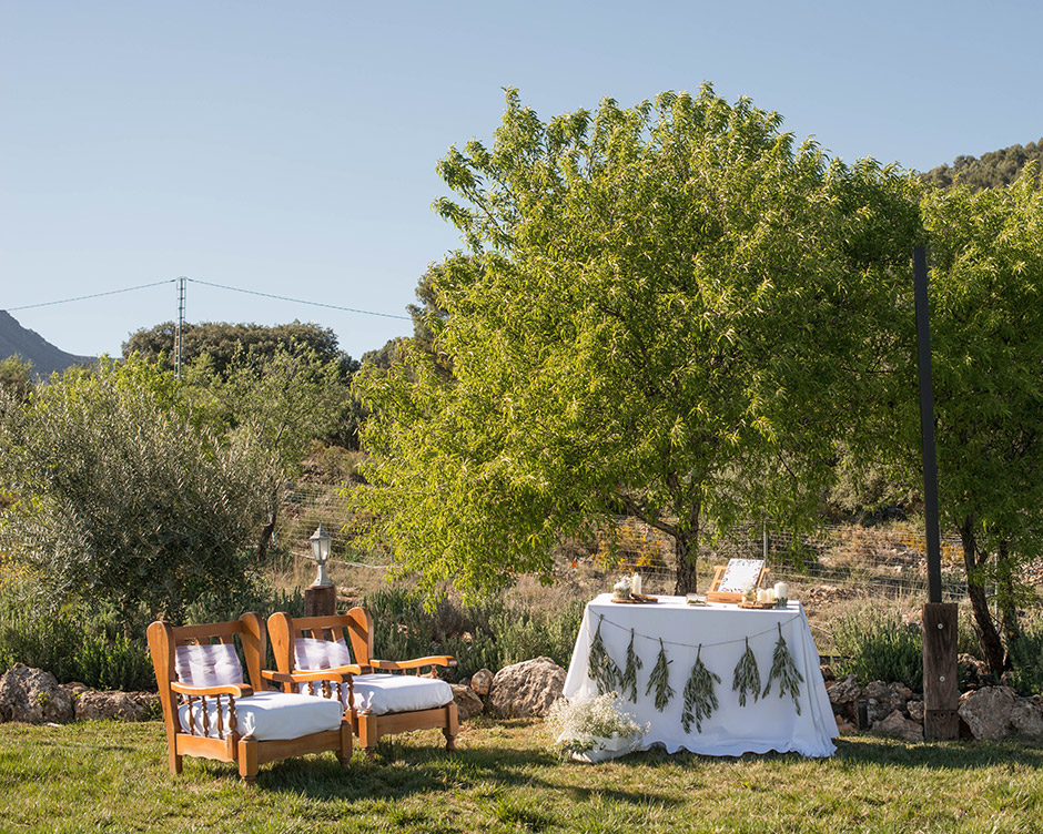 altar boda rustico rama olivo