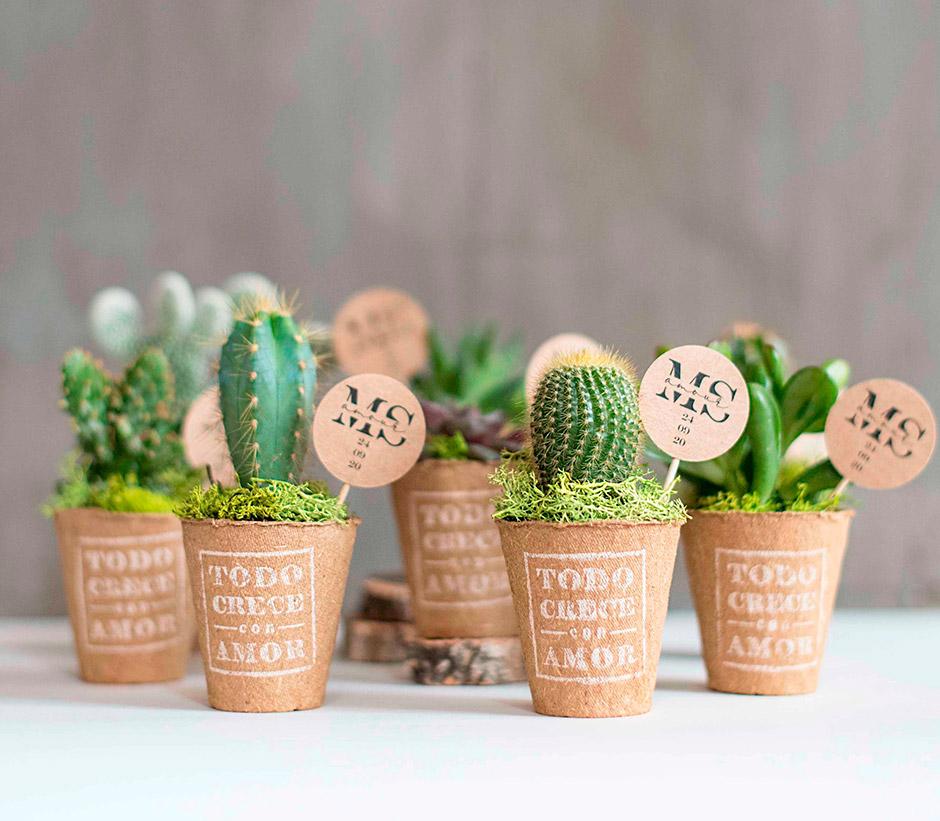 cactus recordatorio boda