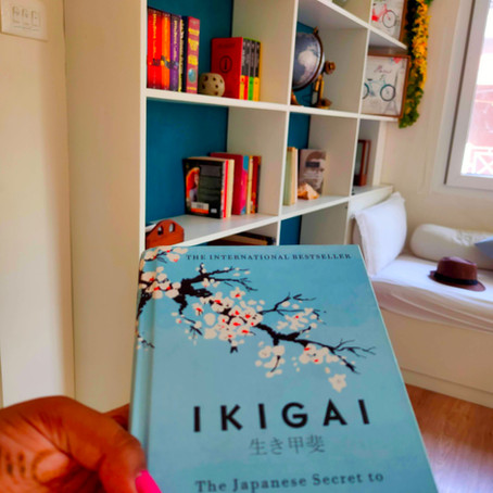 Ikigai - Airbnb Review (Pondicherry)