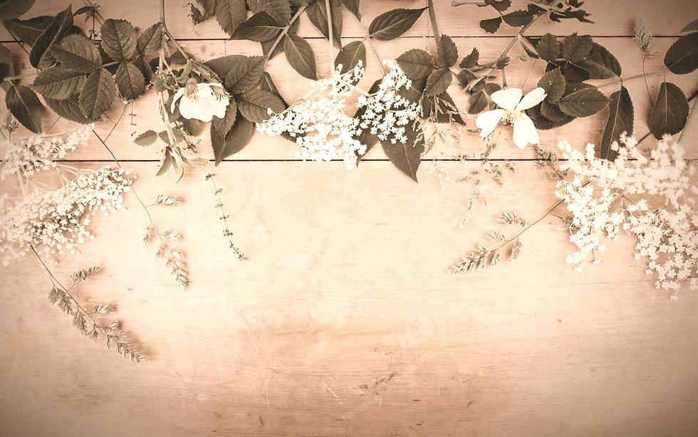 Floral%252520desktop_edited_edited_edited.jpg