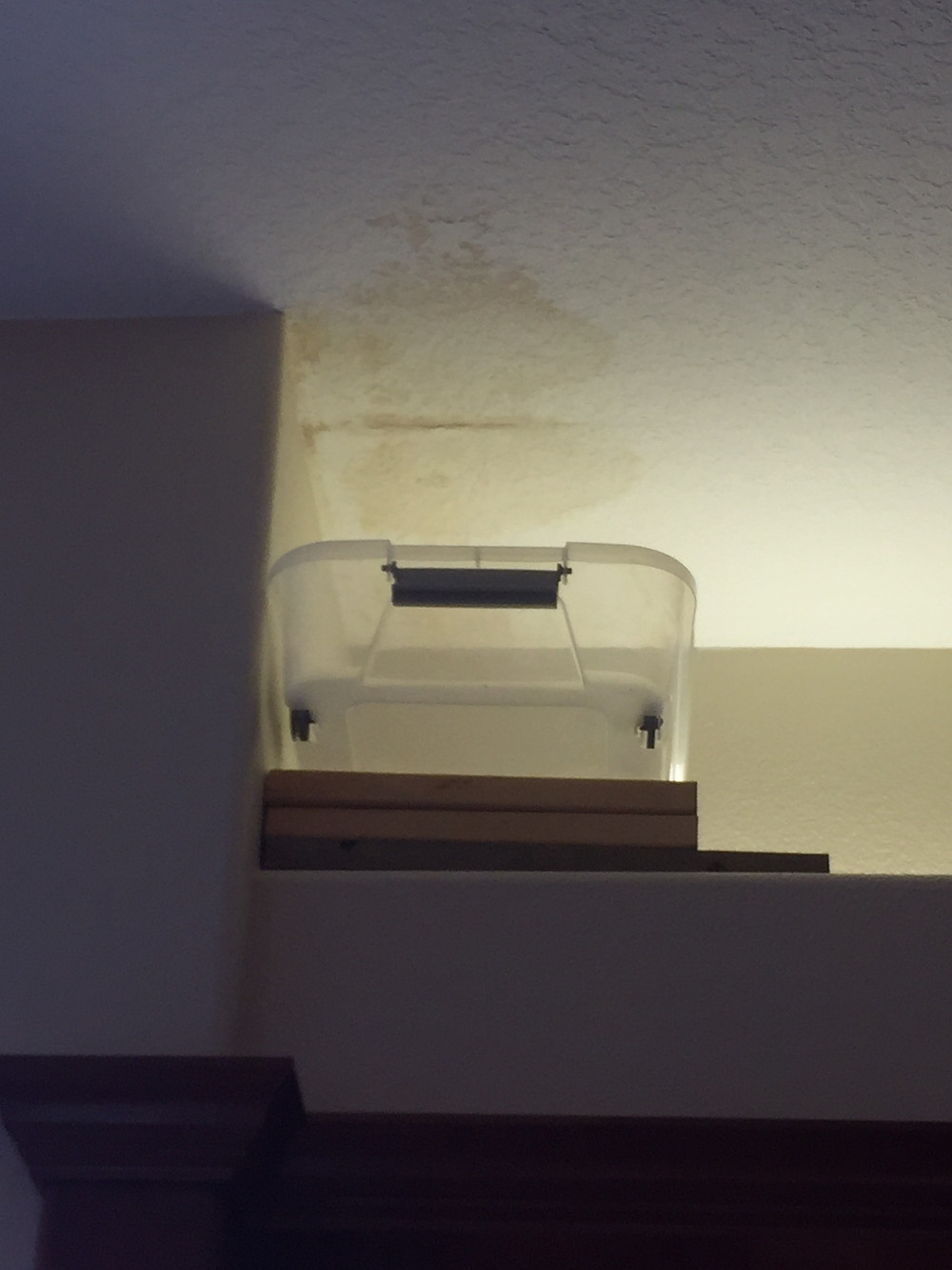 Leaking Roofs and Poor Ventilation can Lead to Mold Growth