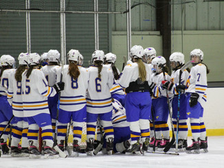 Mustang Mid Season Report: Girls Hockey