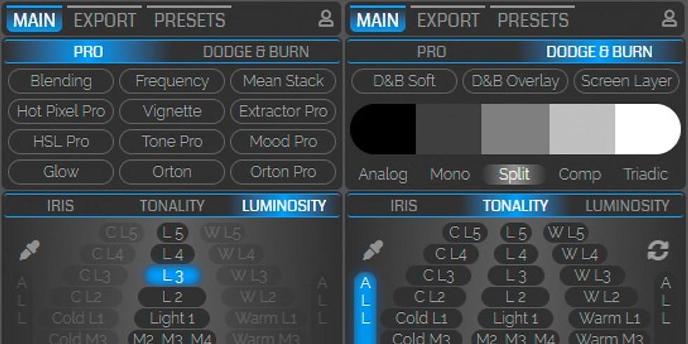 TM Panel I: Luminosity