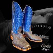 Shark with Blue Upper