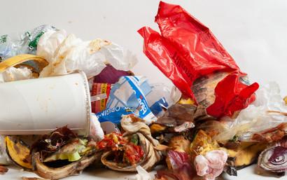 Garbage Sef Portrait