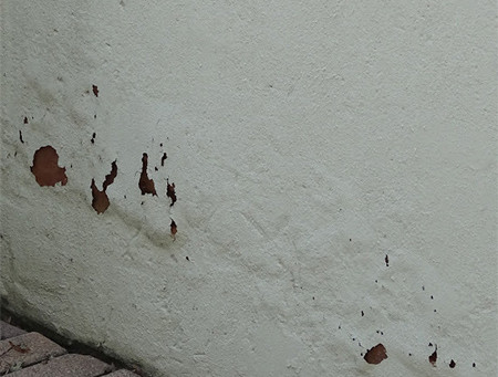 Spotting damp signs in your home and how to handle it