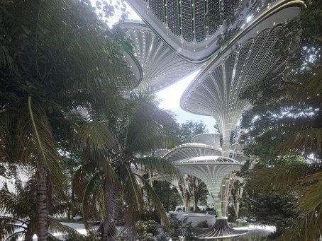 Architects envision a lush, solar-powered oasis to cool Abu Dhabi
