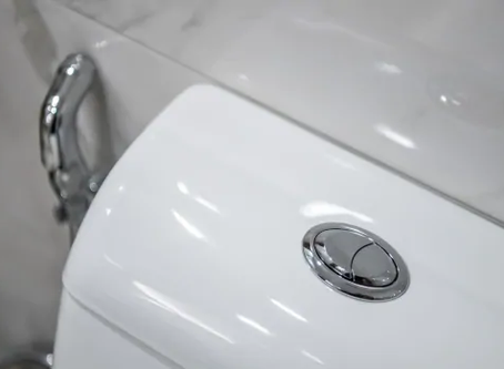 Some dual-flush toilets are actually wasting water