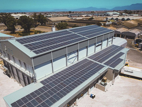 Bulk dough manufacturer commissions solar plant to lower costs, drive sustainability