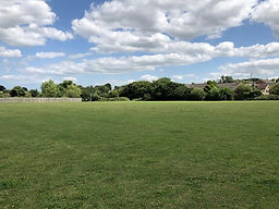 Gregs Meadow July 2020.jpg