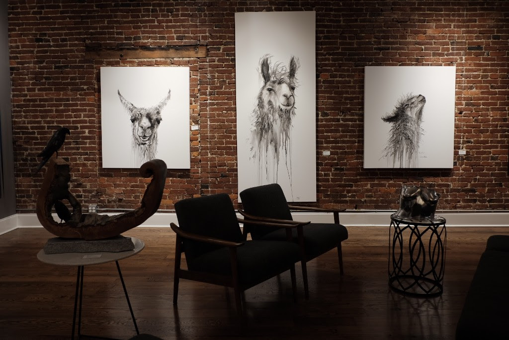 llamas studio 208