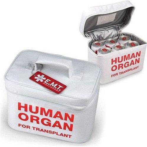 Human Organ Lunch Box/Cooler