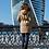 Женское пальто Scanndi finland DW19004 (песочный)