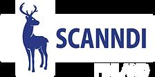 logo scanndi.png