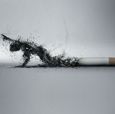 L'Arrêt du Tabac