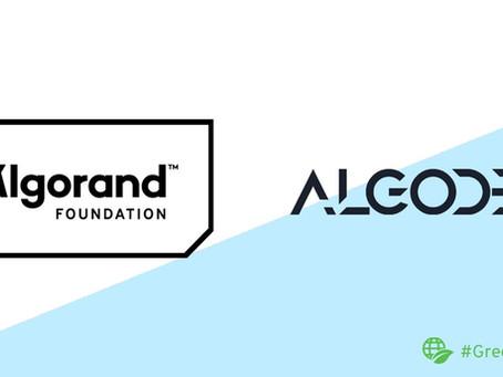 Algodex(アルゴデックス)、アルゴランドとのパートナーシップ発表