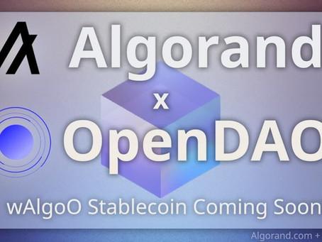 アルゴランドとOpenDAO - 提携