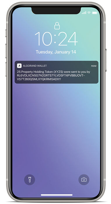 Algorand Wallet Feature4