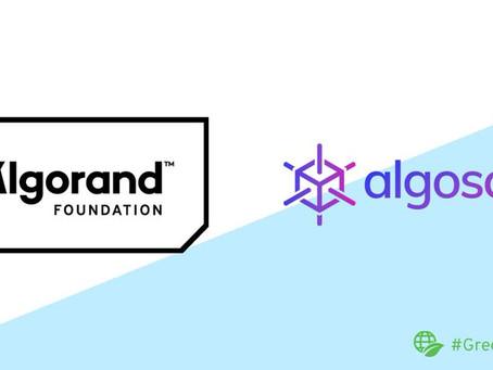アルゴランド財団、新たなエクスプローラ「Algoscan」に助成金授与