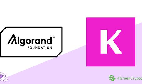 Kollektor.io、ソーシャル・アート・プラットフォーム向けNFTサービスの開発で助成金を獲得