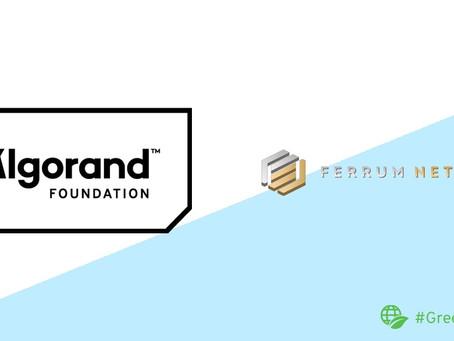 Ferrum Network(フェラム・ネットワーク)、アルゴランドを同社のクロスチェーン・トークン・ブリッジおよびStaking as a Serviceソリューションと統合するための助成金を受領