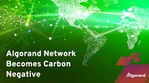 アルゴランド、カーボン・ネガティブなネットワークを持つ最もグリーンなブロックチェーンになることを宣誓