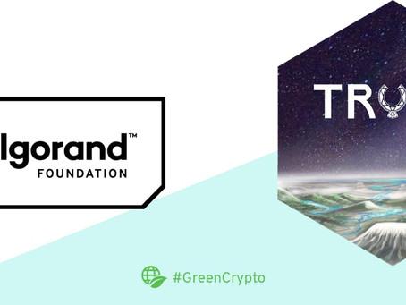 トランスメディア・プロジェクト「Trust」がアルゴランド財団の助成金賞を受領