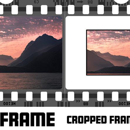 Crop Frame vs Full Frame. Which is Better?