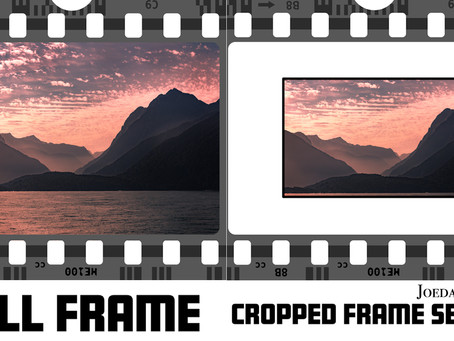 Crop Frame vs Full Frame. Which is Better?