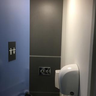 Toilet blocks