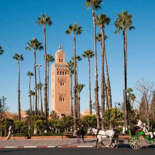 CC_Location_Marrakesh.jpeg