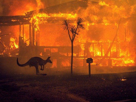 The bushfires are a call to action for Australia, especially for the property industry.