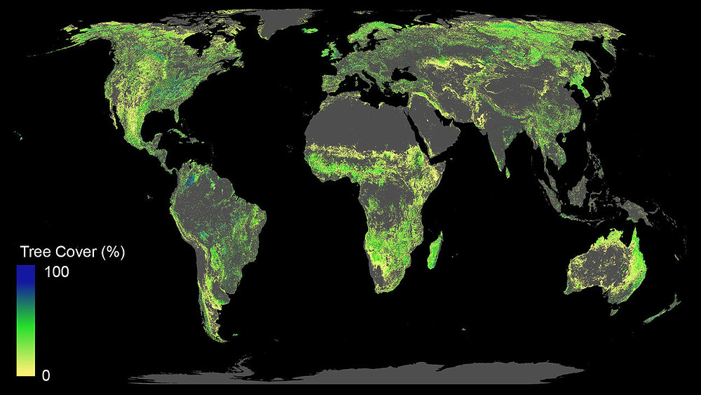 Infographics. World Map. Tree cover worldwide and where the world could support new forests. Global Warming. Climate Coping.