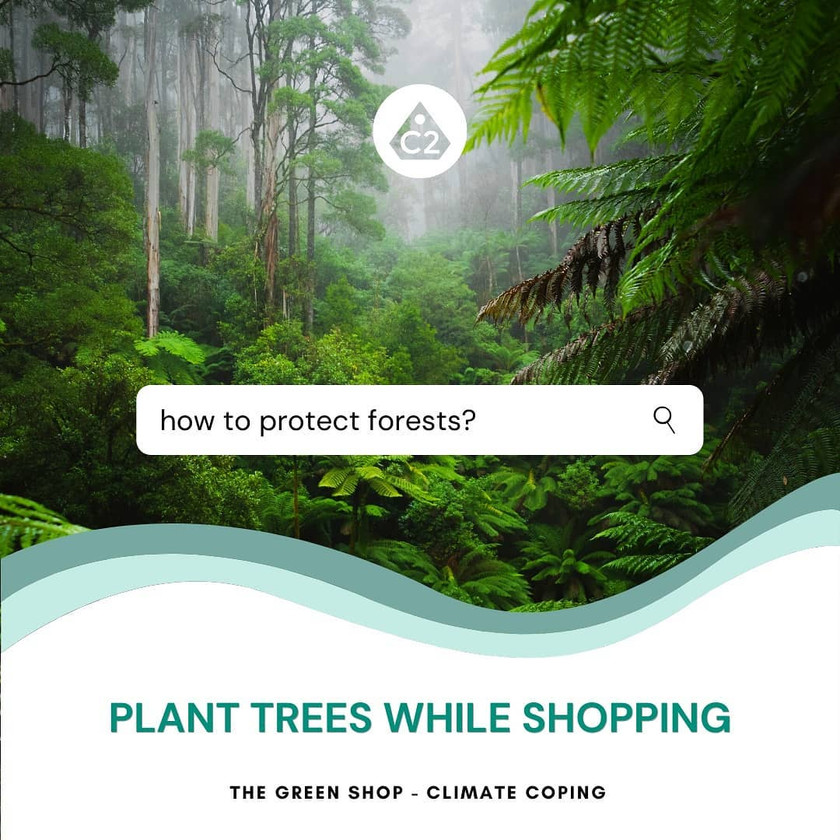 Protect forests by shopping. Infographics. Global Warming. Tree Planting. Climate Coping. Instagram.