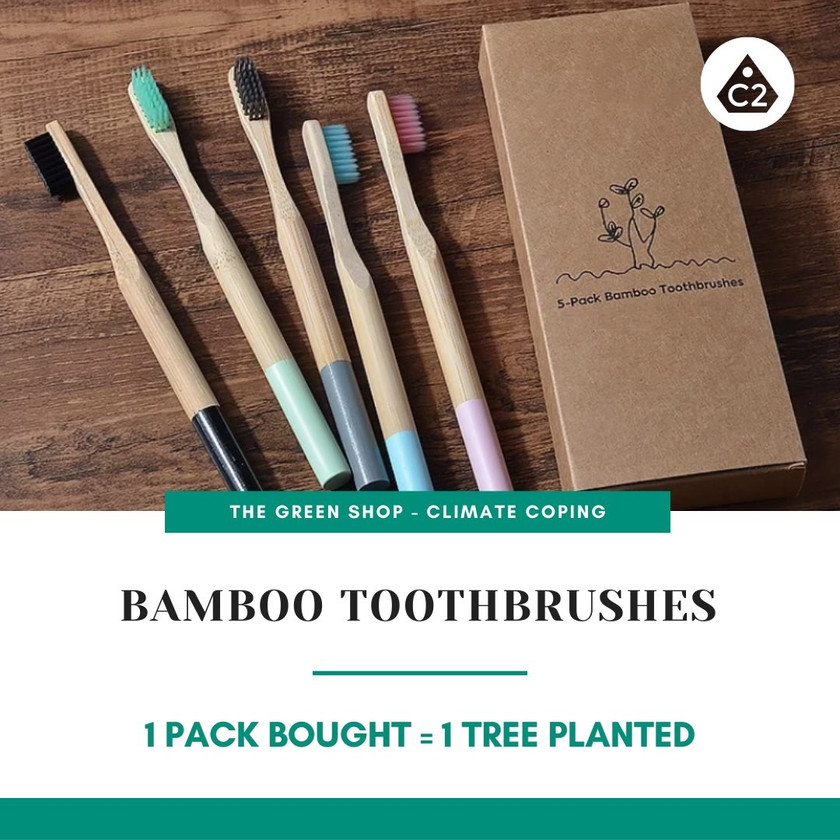 Eco bamboo toothbrushes. Biodegradable. Infographics. Global Warming. Tree Planting. Climate Coping.