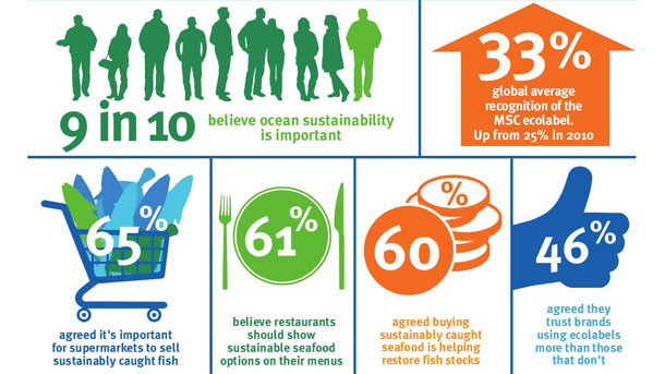 Infographics. 9 in 10 people believe ocean sustainability is important. 65% agreed it's important for supermarkets to sell sustainably caught fish. Ocean sustainability facts and key figures survey. Global Warming. Climate Coping.