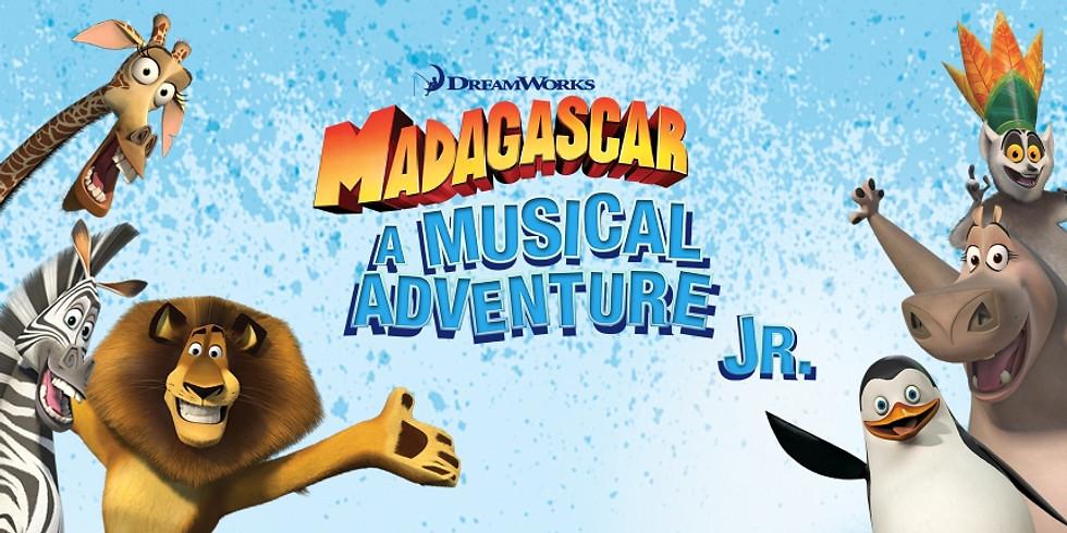 Madagscar Jungle Workshop