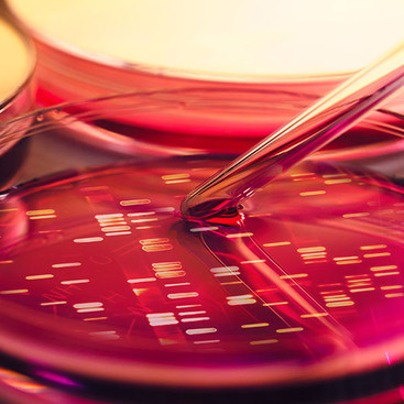 Serviços de laboratórios ideais para você