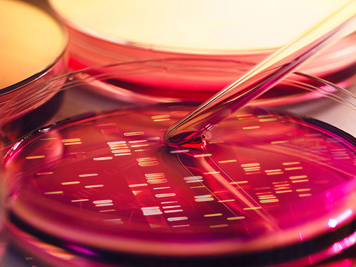 Finding the lab services that  are right for you