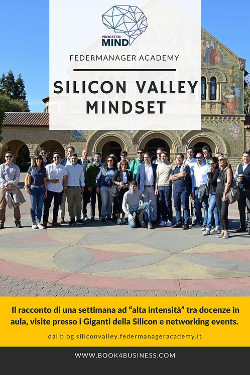 Silicon Valley Mindset