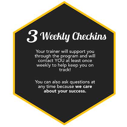 3. Weekly Checkins.png