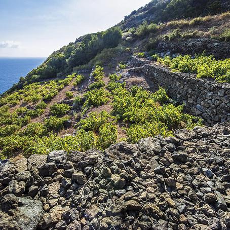 Pantelleria, uma ilha mágica e fascinante