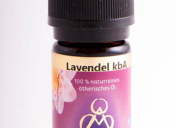 Lavendel - Entspannung