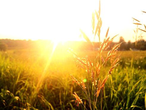 Sunrise_edited_edited.jpg