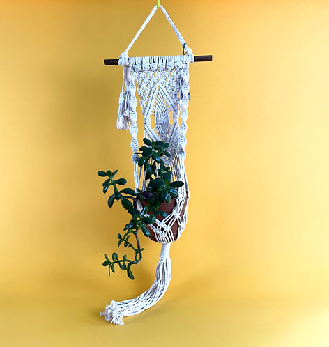 Wall Plant Hangers by Erin Relac